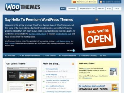 premium-wordpress-themes1.jpg