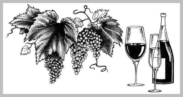 Wine Menu Design - Pen and Ink Illustration