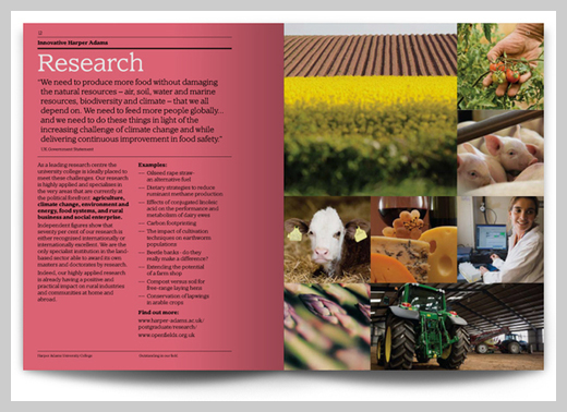 College Brochure Design And Print Examples  Uprinting