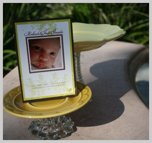 Custom Birth Announcement - Michelle Jade Greenlee