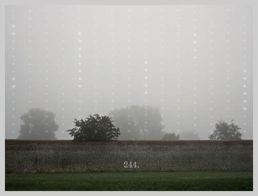 Digital Canvas Print - Fog