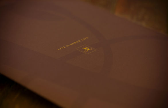 Presentation Folder Designs - Arbor Life