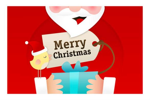 Holiday Card Ideas - Birdies Christmas Card