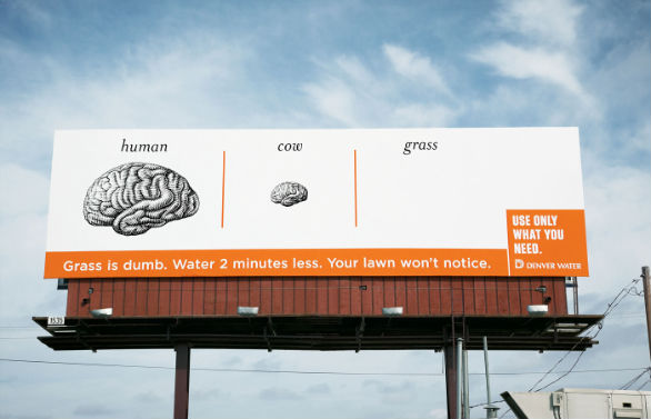 Creative Outdoor Advertising - Denver Water Brain