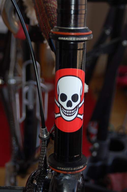 Bicycle Bumper Stickers - Skull