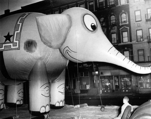 Old Pictures of New York - elephant