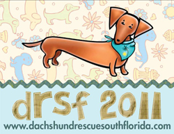 Dachshund Rescue South Florida Calendar