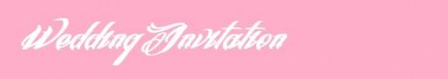 wedding-fonts-wedding-invitations-envelopes-21
