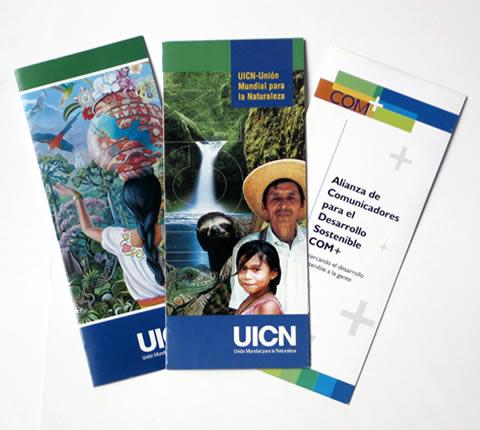 Brochure-Examples-22