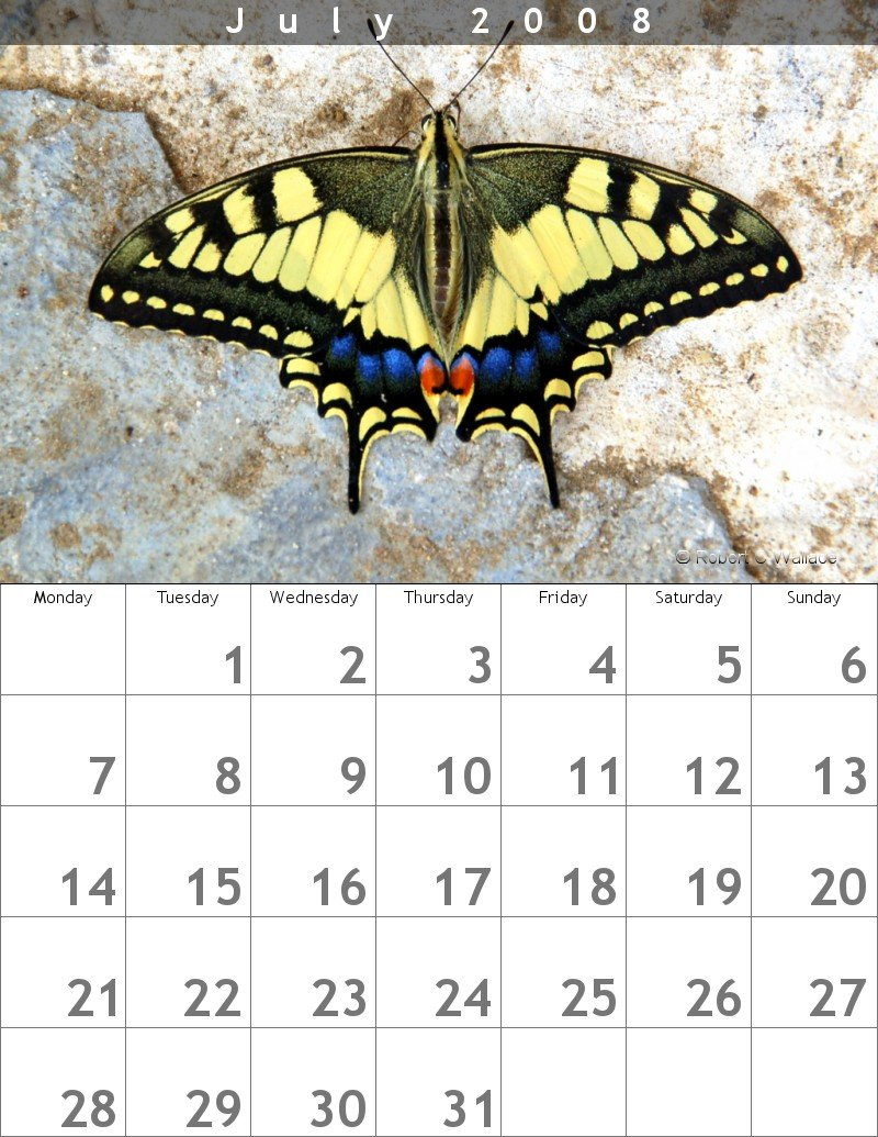 Calendar Design 26  Calendar Sample Design