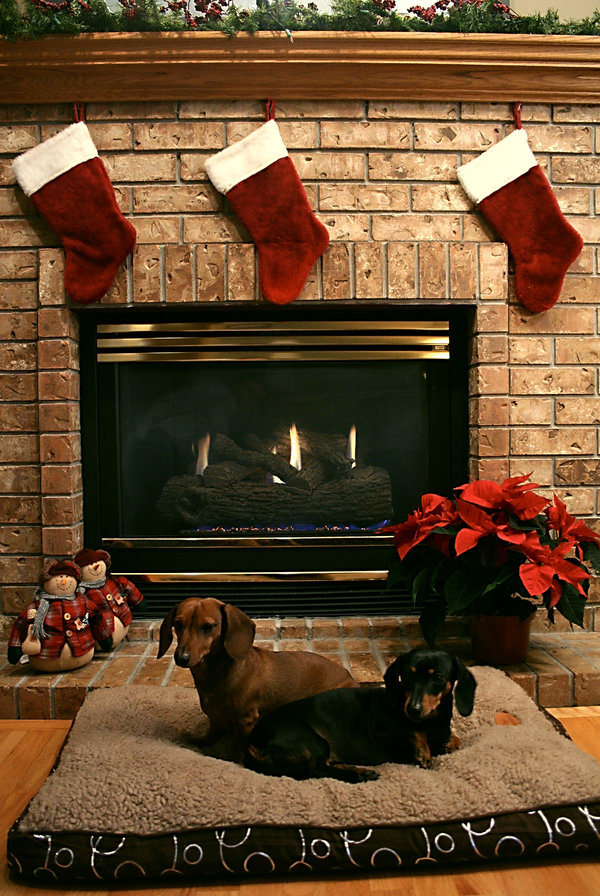 Christmas-Greeting-Cards-28
