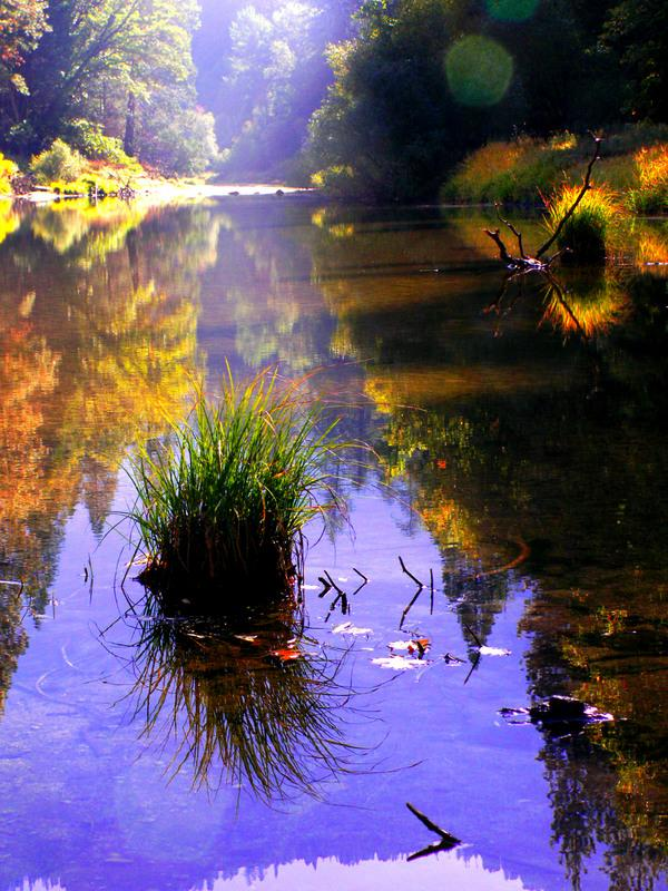 Nature-Photography-01
