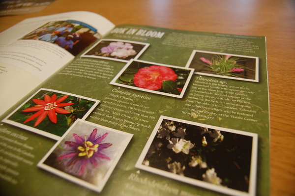 The Garden Path Newsletter Inside