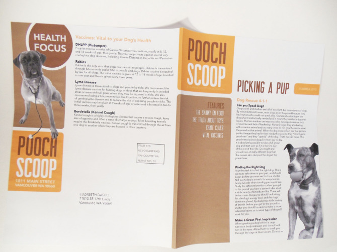 pooch scoop newsletter inside - Newsletter Design Ideas