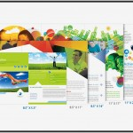 Extensive Guide: Working with Standard Brochures