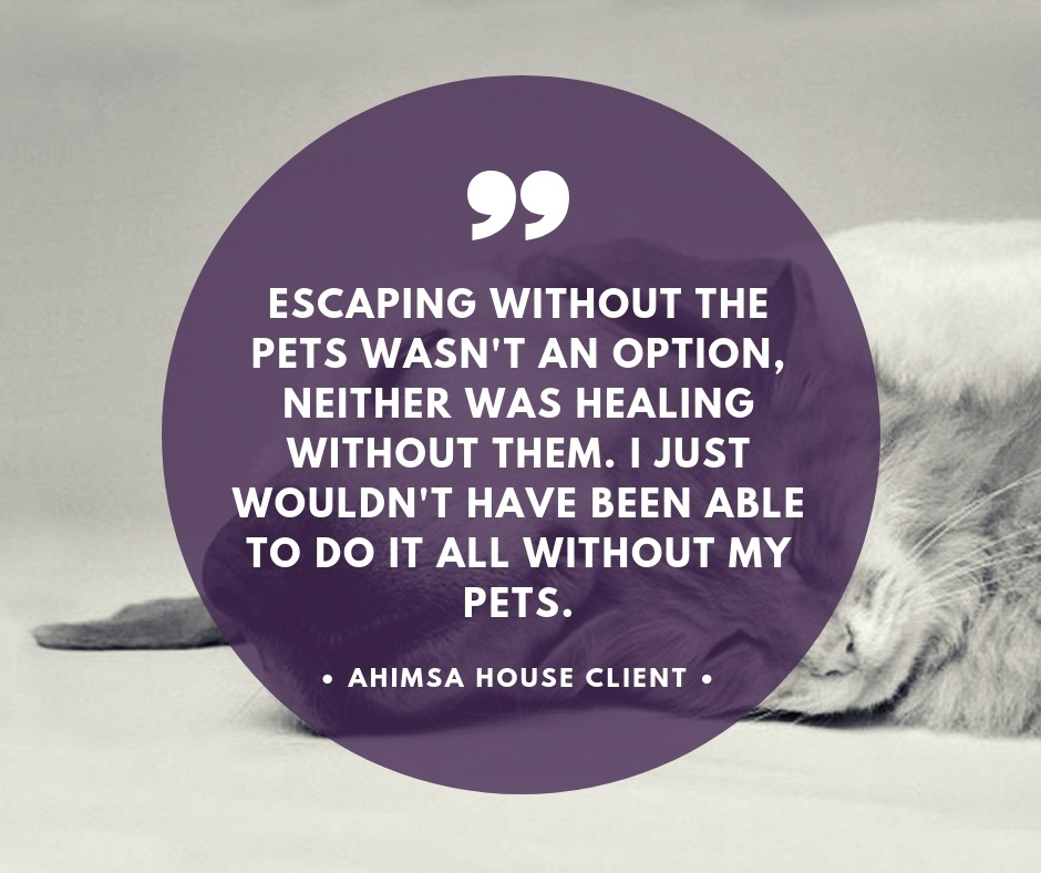 Ahimsa house client pet care testimony